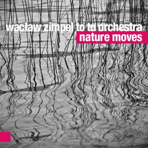 Wacław Zimpel To Tu Orchestra