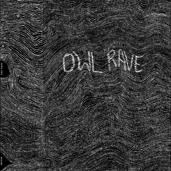 Owl rave